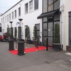 flames-stanchion-ropes-and-posts-red-carpet